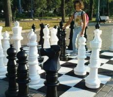 Композитные шахматы